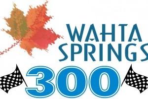 wahta_springs_300_logo_0-318x200